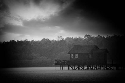 Stormy by Svetoslav Sokolov