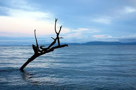 Strait of Georgia by Gerry Bates