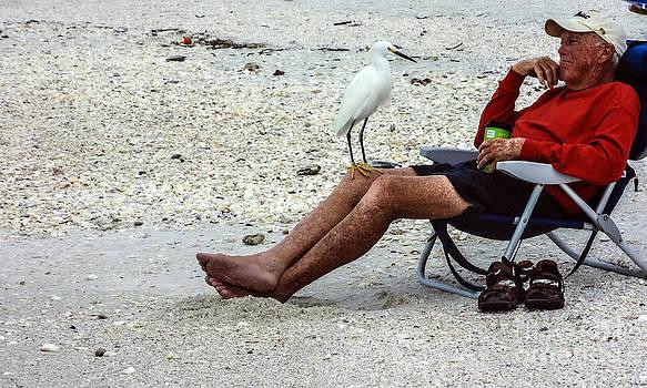 Ginette Callaway - Strange Birds
