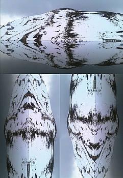 Strange Faces  and Magic Nature by Faouzi Taleb