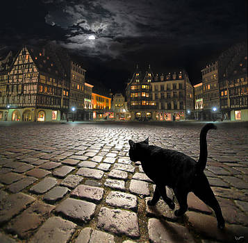 Strasbourg's night by Igor Zenin