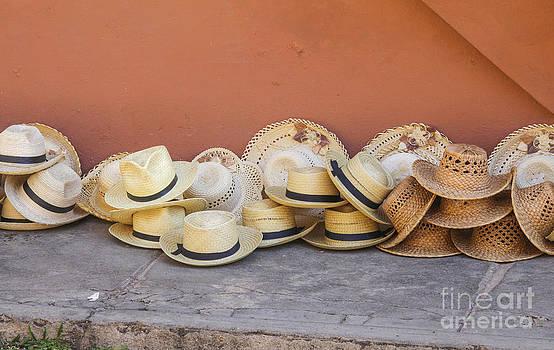 Patricia Hofmeester - Straw hats