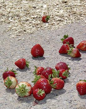 Brian King - Strawberries