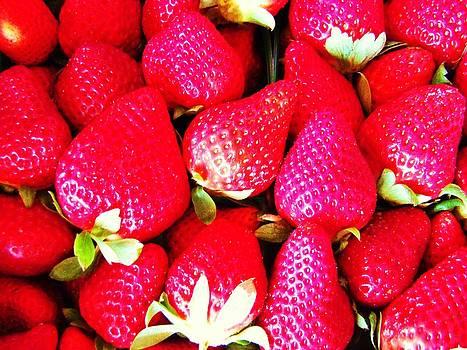 Strawberries by Van Ness