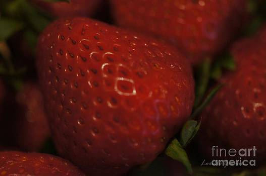 Strawberry Delight by Lorelle Gromus