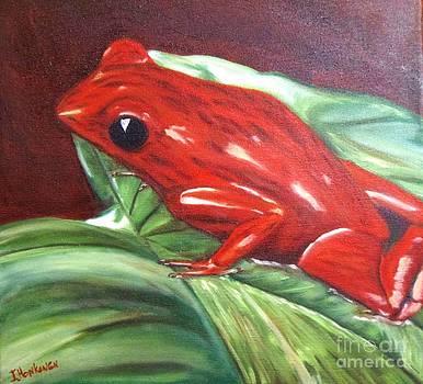 Strawberry Poison Dart Frog by Isabel Honkonen