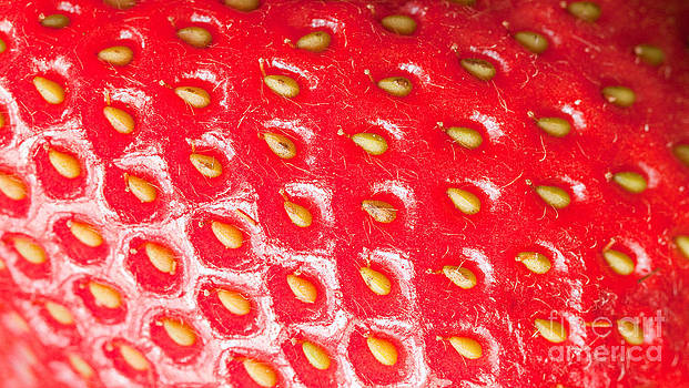 Strawberry Texture by Sharon Dominick