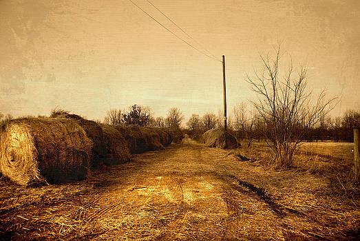 Strawmill Road by Mark Orr