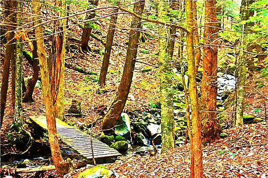 Stream On Appalachian Trail by Spirit Baker