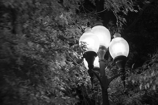 Street Light by David Halter