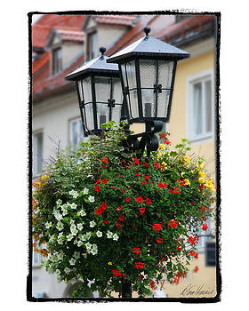 Diana Haronis - Street Lights in Germany