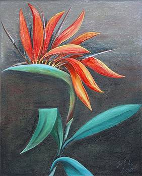 Strelitzia by Gertrude Scheffler