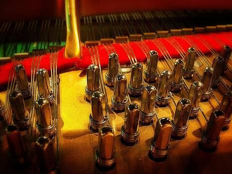 String theory 88 key style by Dan Quam