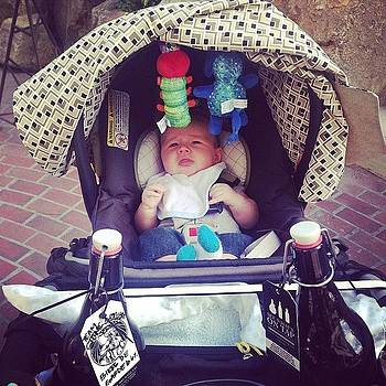 Stroller Cup Holders Are Meant For by Chelsea Daus