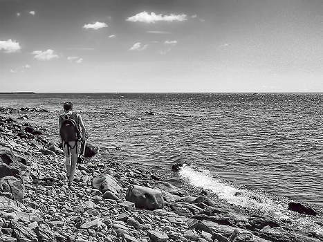 Strolling Along the North Shore by Tom Gort