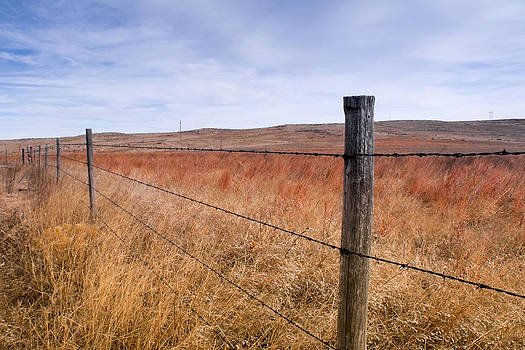 Strong Prairie Fences by Dawn Romine