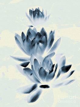 Andrea Kollo - Study in Blue