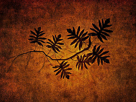 Arkamitra Roy - Study Of A Twig