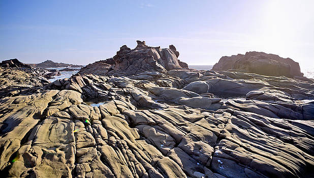 Daniel Furon - Stump Beach 2