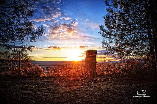 Stump in sunset by Dan Quam