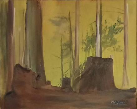Stumps by Gregory Dallum