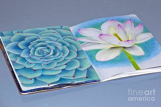 Succulent and Lily by Laura Kayon