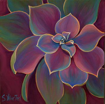 Succulent Delicacy by Sandi Whetzel