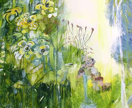 Sudden Sun by Barbara Pearston
