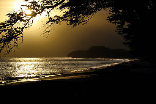 Sugar Beach Contemplation by Jonica Hall