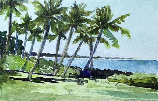 Stacy Vosberg - Sugar Beach Palms