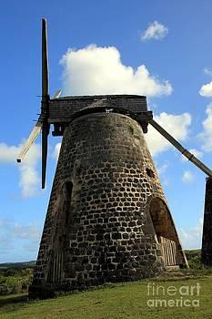 Sophie Vigneault - Sugar Cane Mill
