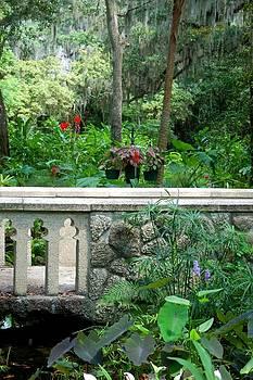 Kathy McCabe - Sugar Mill Bridge