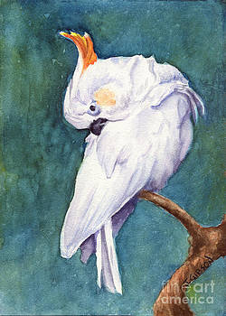Sulpher Crested Cockatoo by Jan Gibson