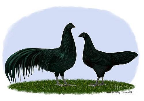 Sumatra Rooster and Hen by Leigh Schilling