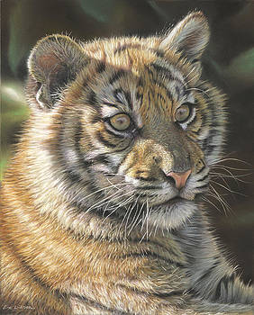 Sumatran Tiger Cub by Eric Wilson