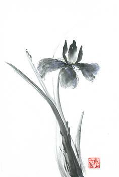 Sumi-e Iris by Terri Harris