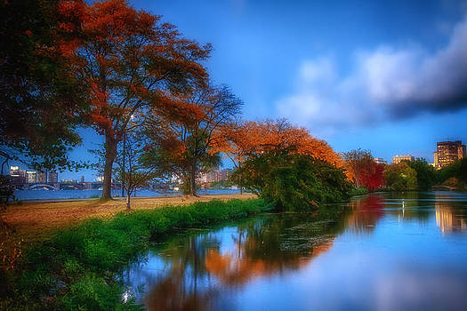 Sylvia J Zarco - Summer and Fall darken the Lagoon