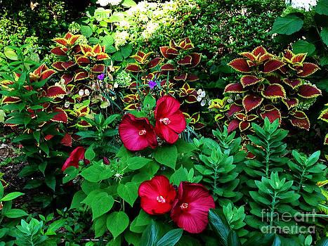 Summer Blossoms by Jinx Farmer