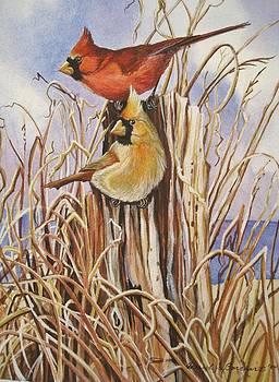 Summer Cardinals by Cheryl Borchert