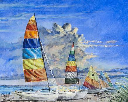 Summer Colors by Virgil Stephens