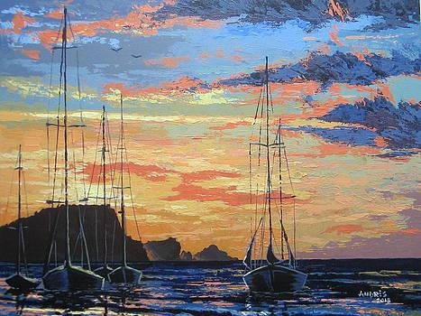 Summer Evening by Andrei Attila Mezei