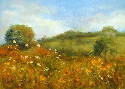 Summer Field by Alexandra Kopp