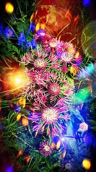 Summer flowers by Mikko Tyllinen