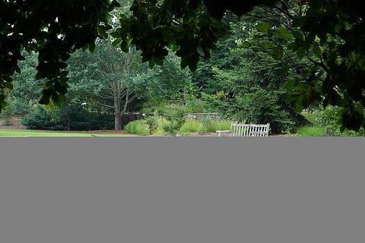 Angela Hansen - Summer Garden