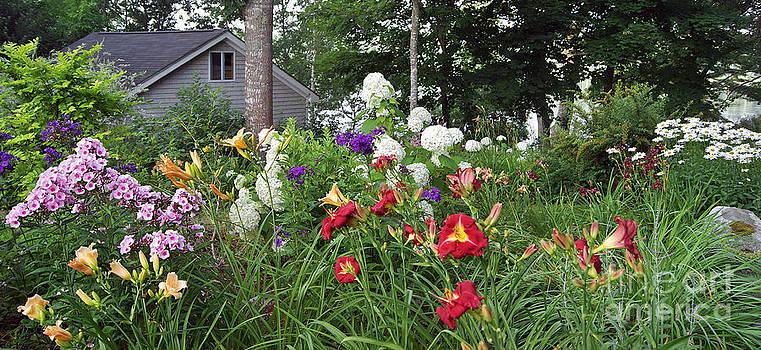 Summer Garden by Christopher Mace