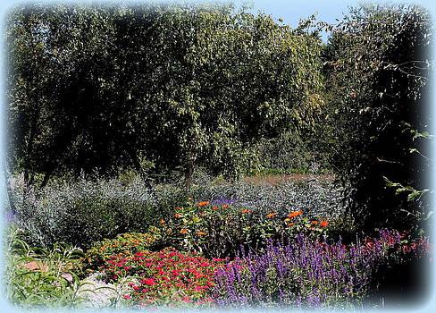 Rosanne Jordan - Summer Garden Delights