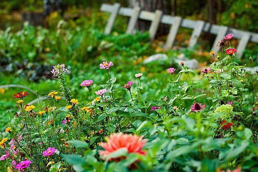 Summer Garden by Viacheslav Savitskiy