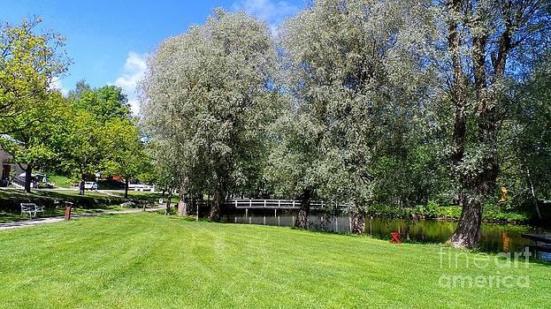 Alan Hogan - Summer Greens in Fiskars