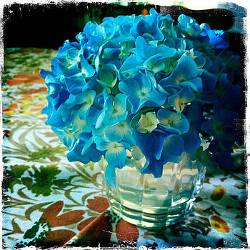 Summer Hydrangea at Woods Hole by Doveen Schecter