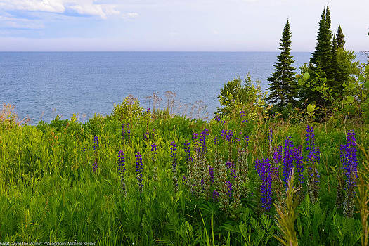 Summer lake view by Michelle Ressler